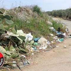 Le Guardie per l'ambiente denunciano: «La strada del Dolmen invasa da rifiuti»