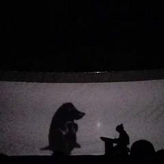 Teatro delle ombre