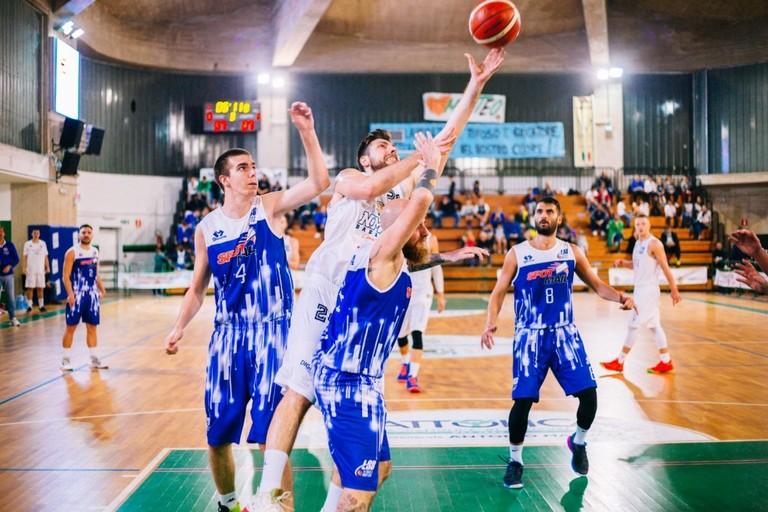 Basket NMC