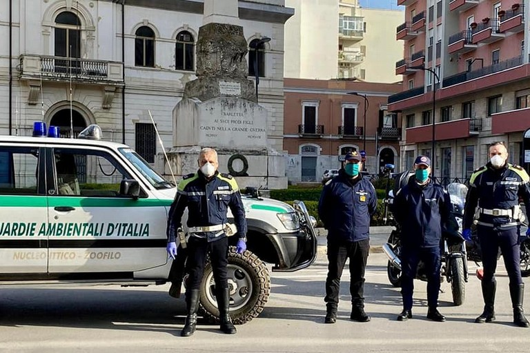GADIT Guardie Ambientali d'Italia