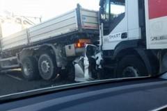 Tragedia sulla Brindisi - Lecce, autista coratino coinvolto nell'incidente