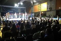 Arti marziali e solidarietà sul ring del Palalosito