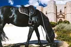 """Cavalieri di tutta Italia a Corato per il raduno nazionale """"Natura a cavallo"""""""