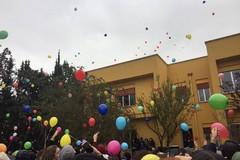 All'Oriani un flashmob per il diritto allo studio