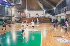 Arriva la deroga per l'uso del Palazzetto, la femminile NMC gioca a Corato
