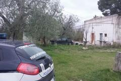 Auto rubata a Corato rinvenuta grazie al GPS