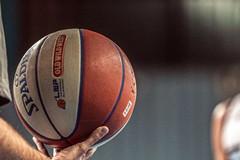 Bagdonavicius e Bricis tornano a vestire la maglia del Basket Corato