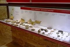 Reperti di San Magno, «Già fruibili nel Museo della città e del territorio»