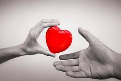 """""""Diamo il meglio di noi"""", le associazioni parlano della donazione degli organi"""