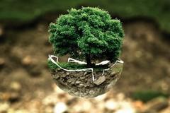 Imparare ad abitare la Terra, alternanza scuola-lavoro con Lebambiente