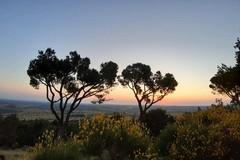 Musica all'alba al Castel del Monte per festeggiare il Solstizio d'Estate