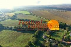 #AltaMurgia2020, al via il Festival della Ruralità