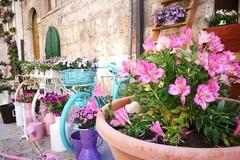 """""""Maggio in fiore"""": decorazioni floreali, cultura e arte per i 40 anni della Fidapa di Corato"""