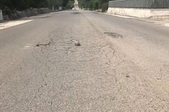Strada provinciale Ruvo - Corato, «il manto stradale si sta sgretolando»