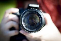 """""""La rivincita delle piccole cose"""", coratini fra i fotoamatori dell'opera digitale collettiva"""