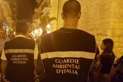 Polizia locale e Guardie Ambientali d'Italia insieme nella lotta agli zozzoni
