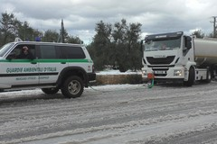 Disagi sulla Corato - Bisceglie, in un video le operazioni di soccorso