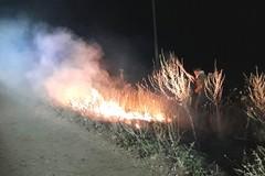 Incendio sulle Murge, intervengono le Gadit