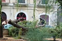 Legambiente e i volontari ripuliscono Piazza Buonarroti