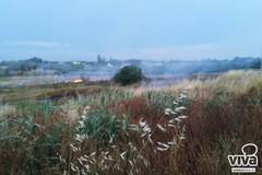 Incendio al Castel del Monte, un'ora per domare le fiamme