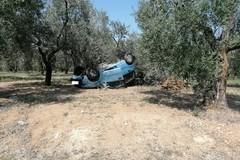 Grave incidente sulla Corato - Andria, auto contro un albero di olivo