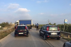 Guardie giurate intercettano camion rubato, autista preso dopo un rocambolesco inseguimento. VIDEO