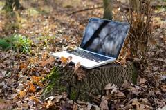 """Parte """"Masserie 2.0"""", connettività wifi e servizi digitali nelle aree rurali"""
