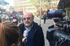 Xylella, Unapol e Italia Olivicola denunciano due parlamentari negazionisti del M5S