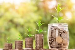 Fundraising, strategie e strumenti per raccogliere risorse