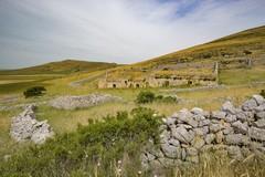"""""""Terra venti nuvole"""" presenta Il diario del pastore"""