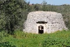 Cnapi, Coldiretti fa appello ad ANCI: «Forte partecipazione a tutela del patrimonio»