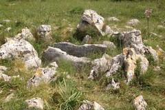 L'Archeoclub alla Soprintendenza: «Restituite i reperti di San Magno»