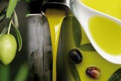 Extravergine di oliva, crollo dell'export. Coldiretti: «In 3 mesi -10.4%»