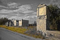 Alta Murgia, ulivi e via Traiana fra gli 8 itinerari suggestivi di Puglia