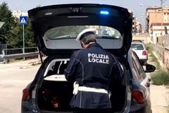 Controlli serrati per evitare gli spostamenti, l'intervista al vice comandante Loiodice