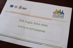 PSR Puglia, target di spesa raggiunto. Pronti ulteriori 544 milioni di euro
