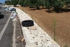Rifiuti, il sindaco di Bisceglie: «Metteremo fototrappole sulla strada per Corato»