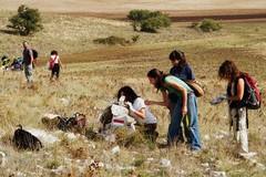 Parco dell'Alta Murgia, da oggi possibile prenotare visite con le Guide ufficiali