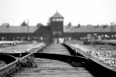 """""""Ricordare per non rivivere"""", in memoria delle vittime del nazifascismo"""
