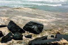 «Gli impianti di trattamento delle acque reflue di Corato sono oggetto di una procedura di infrazione nei confronti dell'Italia»