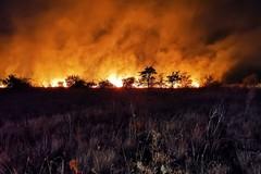 Altro incendio nelle campagne di Corato