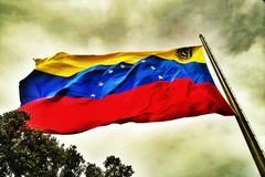 Loizzo: «Solidarietà al popolo venezuelano. Si esponga una bandiera all'esterno del Palazzo di Città»
