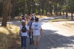 Via Francigena e Cammini d'Europa, le domeniche d'autunno passano dai luoghi di Luisa Piccarreta