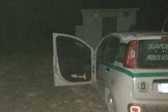 Guardie Campestri sventano furto di cavi elettrici