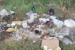 Runners tra la spazzatura: «Indecenti atti di inciviltà»