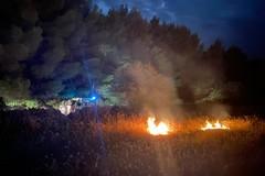 Nuovo incendio nelle campagne di Corato, fiamme minacciano il bosco