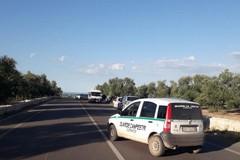 Auto finisce fuori strada sulla Corato-Bisceglie