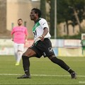 Corato Calcio, Kolawole Agodirin resta neroverde