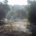 Ancora fuoco in città, due interventi nel pomeriggio