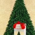 """Solidarietà sotto l'albero: nasce il """"dono sospeso"""""""